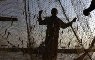 28 Indian fishermen arrested by Lankan Navy