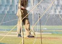 Will use treated sewage water for ground maintenance: BCCI