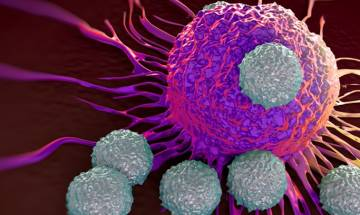 How Chinese medicine kills cancer cells decoded