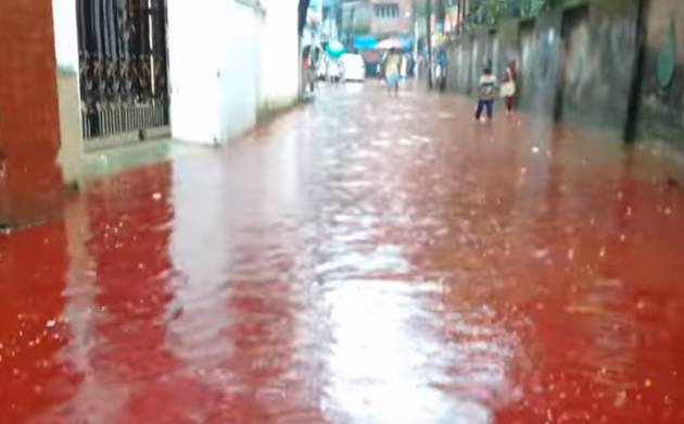 Eid animal sacrifices turn Dhaka streets into rivers of blood (Pic: Grab from YouTube)