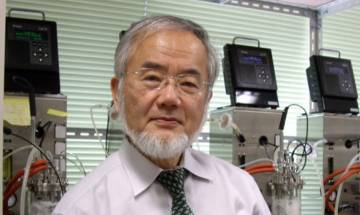 Japan's Yoshinori Ohsumi wins Nobel Medicine Prize