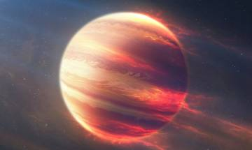 Scientists discover planet Wolf 1061c that could sustain alien life