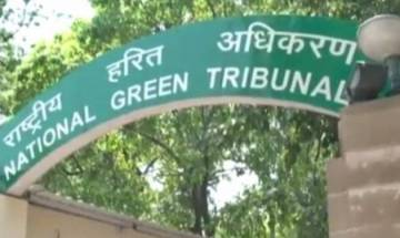 NGT orders probe into high-profile South Delhi redevelopment project