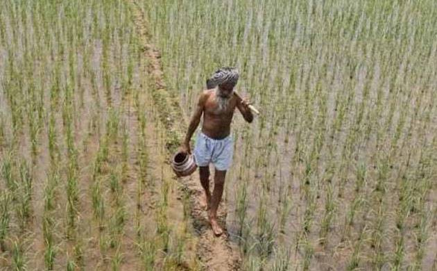 Govt waives off Rs 660.50 crore interest on short-term crop loans to farmers (File photo: PTI)
