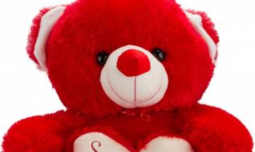 Teddy Day 2017: 5 interesting facts you should know on Valentine's week