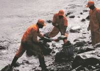 Chennai oil spill: Rs 5,000 each to 30,000 families of affected fishermen