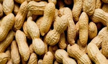 Eating peanuts may reduce heart risks, says study