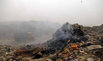 NGT notice to Delhi, UP governments on waste burning in NCR region
