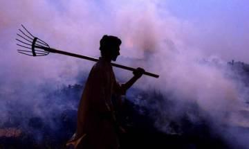 Yogi Adityanath govt mulls blanket ban on stubble burning