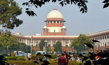 SC may set up Constitution bench after summer vacation over plea challenging HC verdict on LG primacy