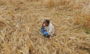 NITI Aayog Vice-Chairman Arvind Panagariya denies plans of taxing agricultural income