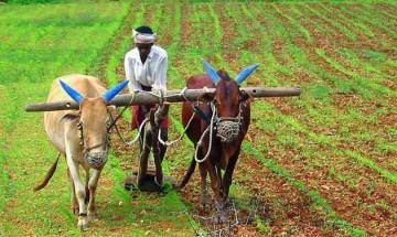 7 lakh Rajasthan farmers set to receive insurance cover of Rs 6 lakh