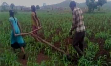 Madhya Pradesh: Financial crisis forces farmer to use daughters as oxen in the field