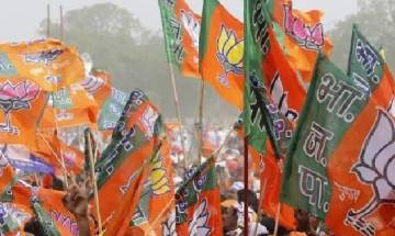 It's time to revoke Article 370 and 35 A, says BJP's Jammu and Kashmir unit