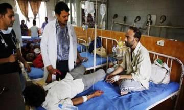 Delhi stung by chikungunya, dengue, malaria; over 1,700 affected