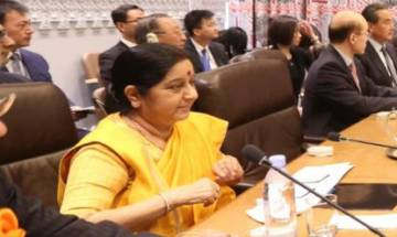Sushma Swaraj's veiled attack on Pak: 'Countries using terrorism as an instrument of state policy'