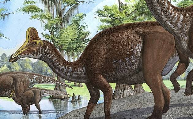 Dinosaur dung reveals plant-eating dinosaurs feasted on crabs