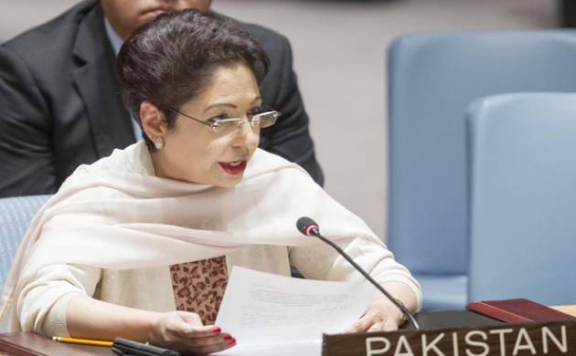 Pak raises Kashmir issue at UN, India dubs it 'lonely voice from wilderness'
