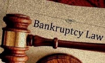 Bankruptcy and Insolvency Law amended, willful defaulters barred from bidding to reclaim company