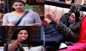 Bigg Boss 11, January 2: Shilpa Shinde and Hina Khan team up against Akash Dadlani