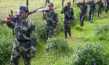 Watch | BSF launches 'Operation Alert' along 200 km international border to thwart infiltration