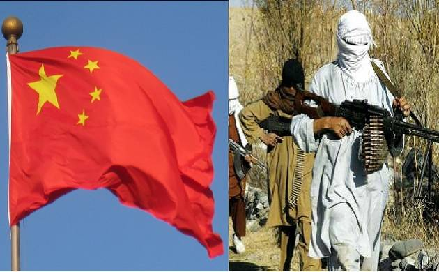China could convince Pak for dismantling terror safe havens: White House official (Twitter/ PTI Image/File)