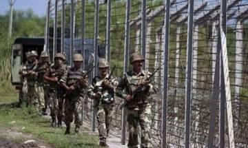 Pakistan shells areas along LoC, IB in Jammu