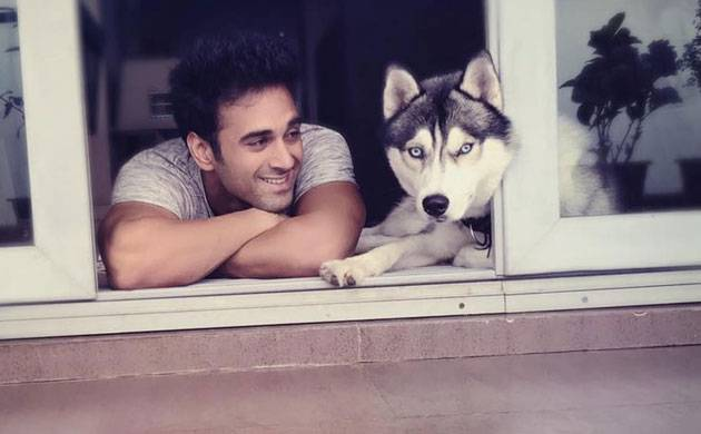 Veere Ki Wedding actor Pulkit Samrat reveals his Valentine's Day plan and it is not with Yami Gautam