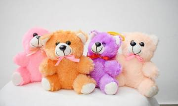 Teddy Day 2018: Here's what each color of Teddy Bear signifies