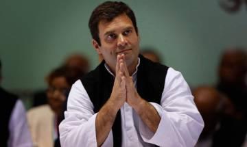 Rahul Gandhi dissolves Central Working Committee, forms 34-member Steering Committee instead