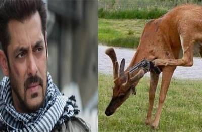 Blackbuck poaching case: After verdict, Salman Khan gets Twitter trolled