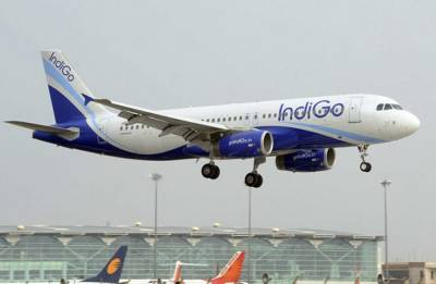 IndiGo offloads passenger for his 'unruly' behaviour over mosquitoes