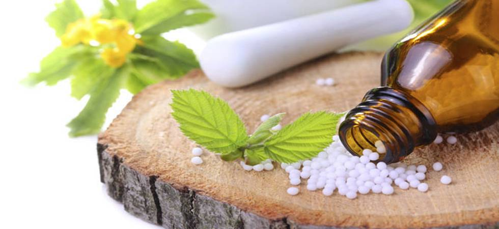 Medicinal plants sector: Cabinet okays MoU between India, African nation (Representative Image)