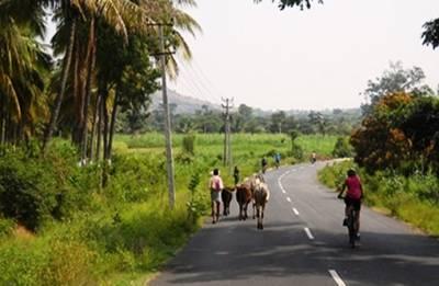 Goans skip beaches, hit the hinterland to beat summer heat
