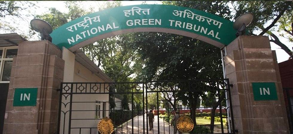 Green cover along highways: NGT issues notice to NHAI (Source- PTI)