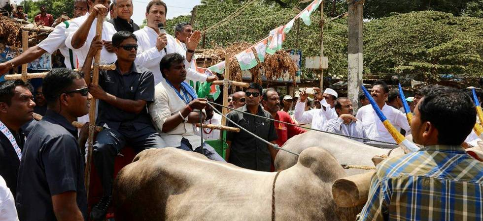 Rahul Gandhi holds protest march against rising fuel prices in K'taka (Photo Source: Congress Twitter)