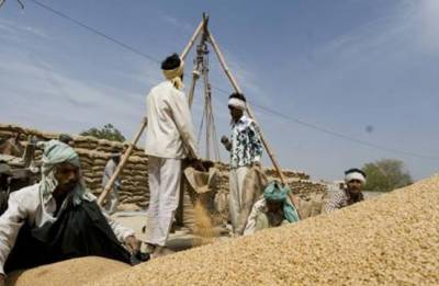 Government keeps selling price of PDS grains unchanged for one more year