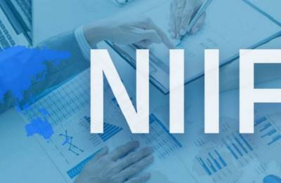 NIIF to launch $2-billion long-term fund to finance mega projects: CEO