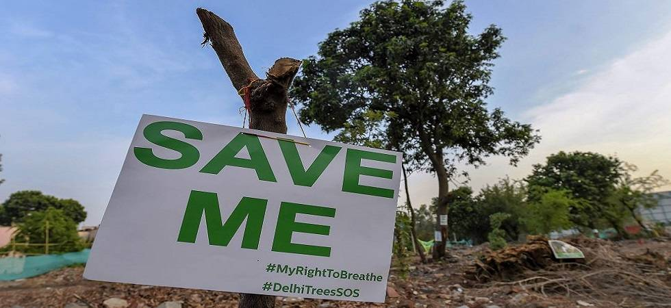 Delhiites must heighten campaign against felling of trees (Photo Source: PTI)