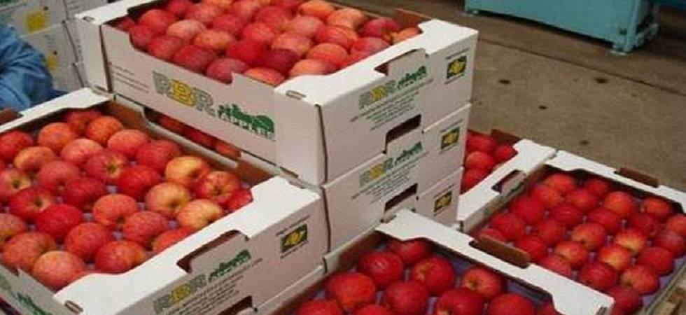 Himachal government announces MIS for apple procurement (Representative Image)