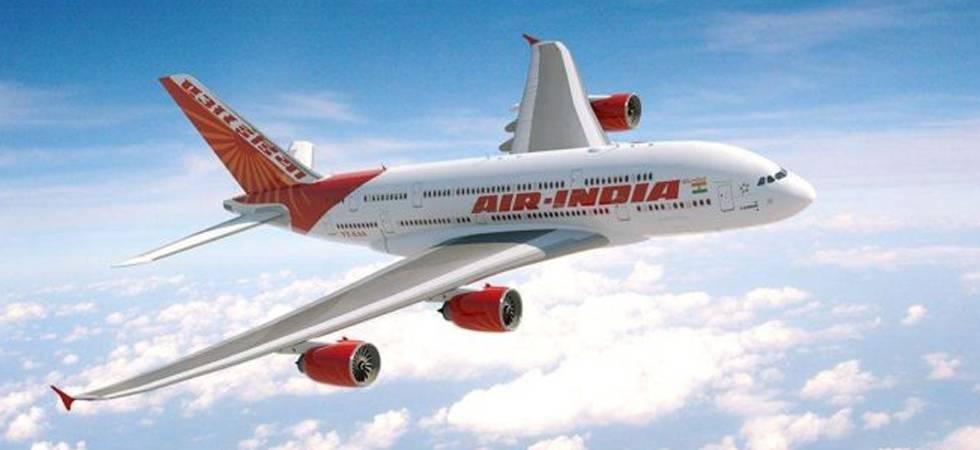 Air India plane suffers bird hit while landing at Chennai airport (File photo)