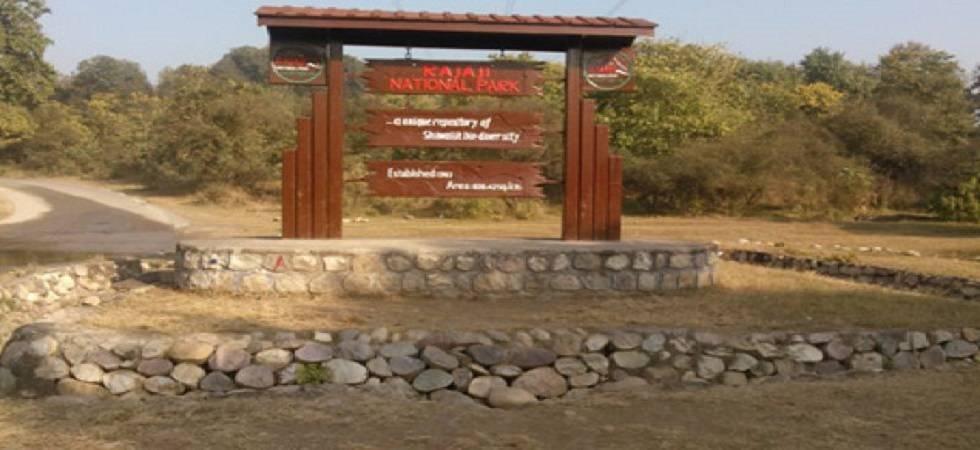 Rajaji Tiger Reserve (Photo- PTI)