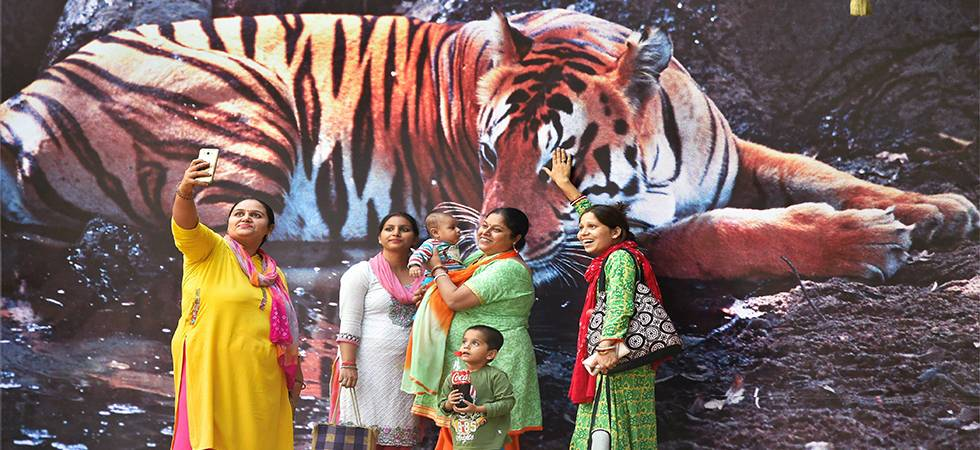 International Tiger Day 2018: Tigers are piece of beauty, lets embrace and save them! (Photo: PTI)
