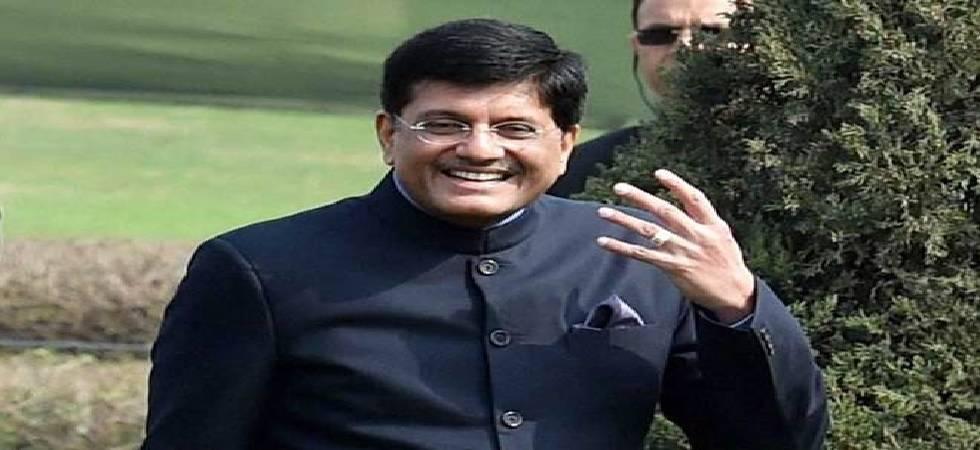 Is Piyush Goyal 'caretaker' Finance Minister?