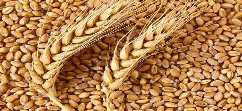 Wheat Futures Slip 055 On Firm Supply Newsnation