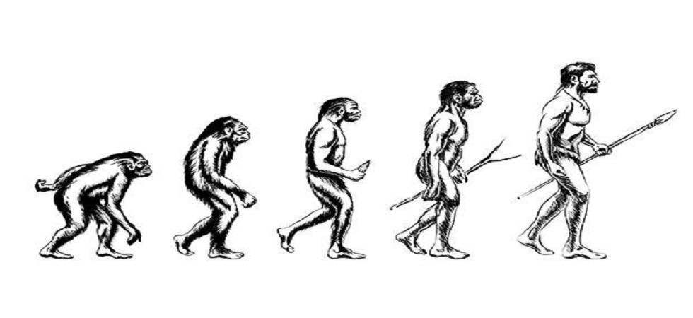 Laziness, paired with an inability to adapt to a changing climate, may have wiped out the Homo erectus ( Photo: Twitter/ @Disappear_Citiz)