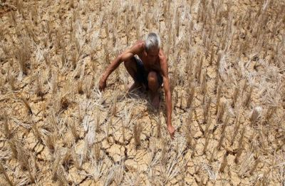 Decoding India's farm crisis and farmers' woes
