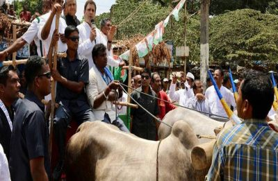 Fuel Price Hike: RJD, JD-S, Left extend support to Congress' 'Bharat Bandh'