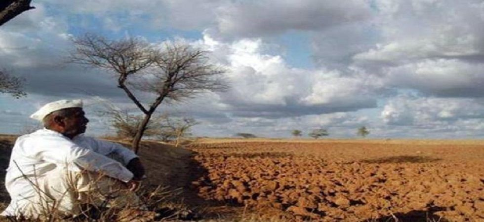 17 Maharashtra districts under threat of water scarcity: Officials (File Photo- PTI)