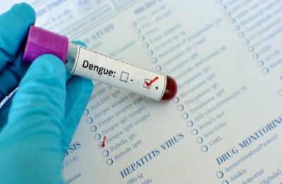 Delhi: Dengue cases in national capital jump to 343; 236 in September alone